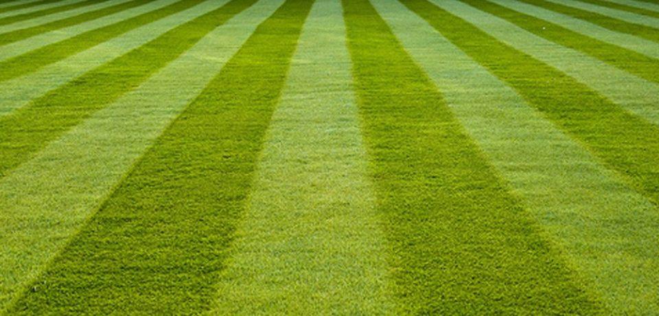 Gorgeous Artificial Turf, Eco lawn Santa Barbara